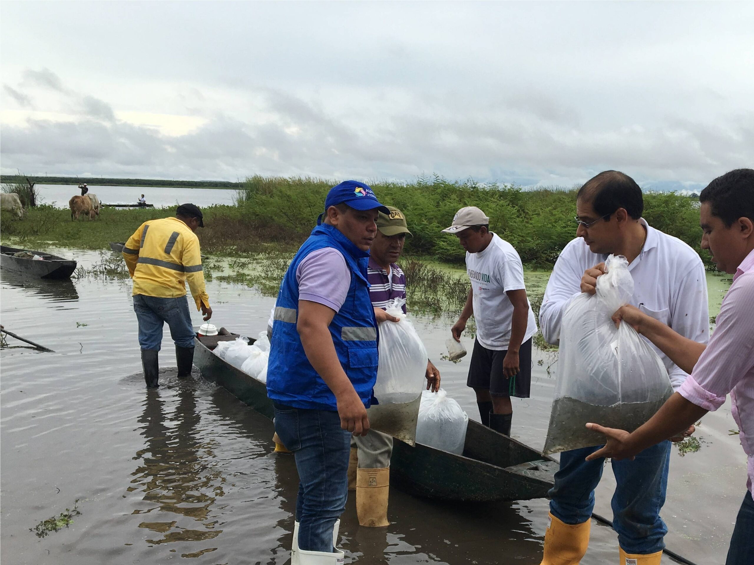 *Entities actively participated in the fishing restocking process in La Pachita and Mata de Palma bogs