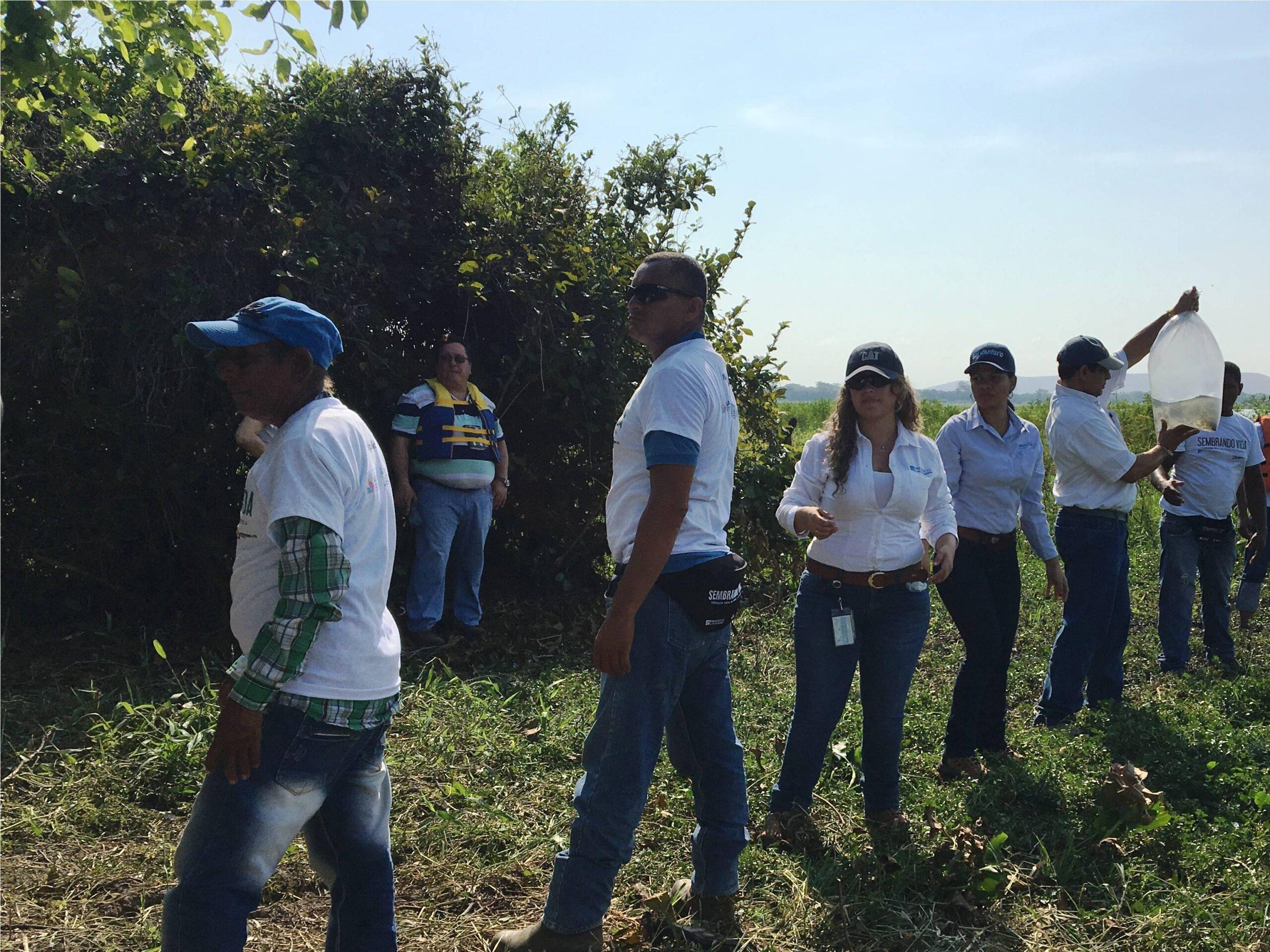 Entidades participaron activamente en el proceso de repoblamiento pesquero en las ciénagas La Pachita y Mata de Palma